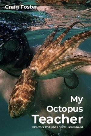 my_octopus_teacher-902842067-mmed